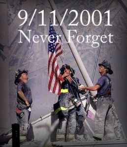 9-11nf